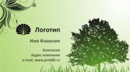 Шаблон визитки в зеленых тонах